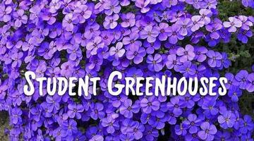 Cayuga-Onondaga BOCES Student Greenhouse Sale is open for business!